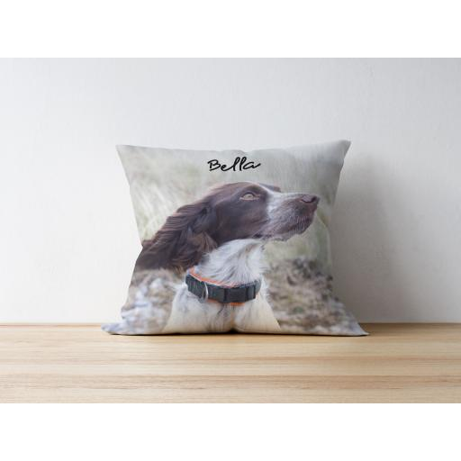 Dog Cushion - Different Colours!